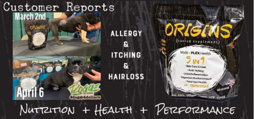 Origins Canine 5 in 1 Supplement For Dogs Improves Allergies