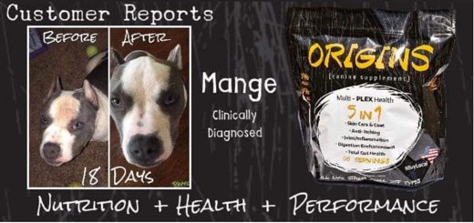 Origins Canine 5 in 1 Supplement For Dogs Improves Mange