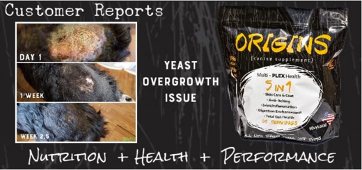 Origins Canine 5 in 1 Supplement For Dogs Improves Yeast Overgrowth