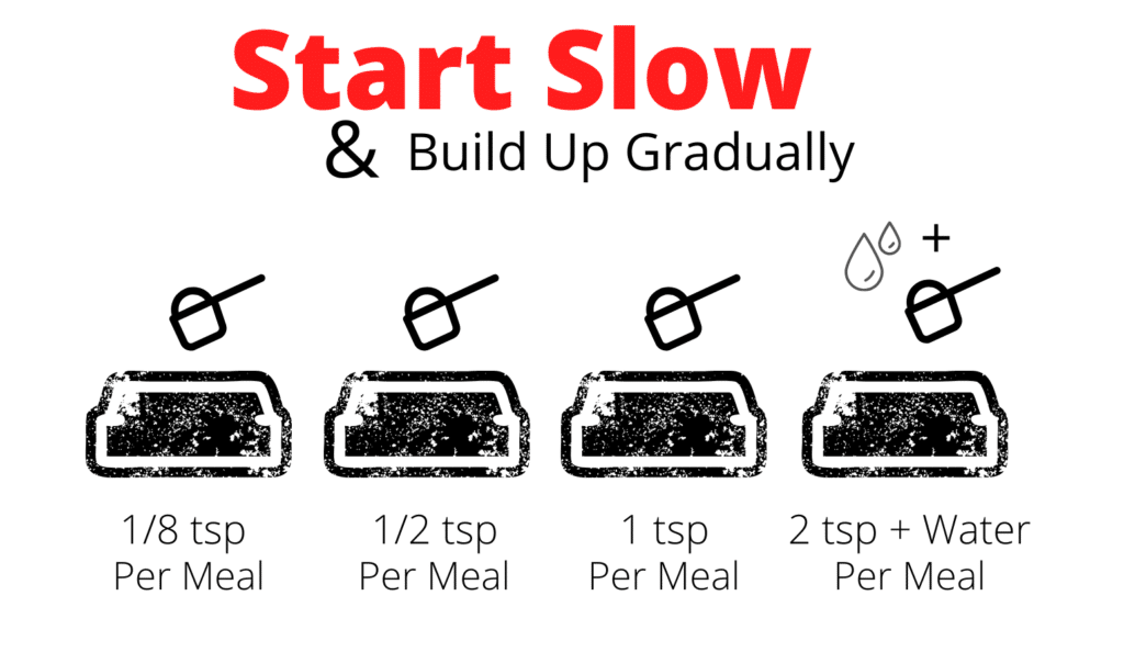 How to feed start slow