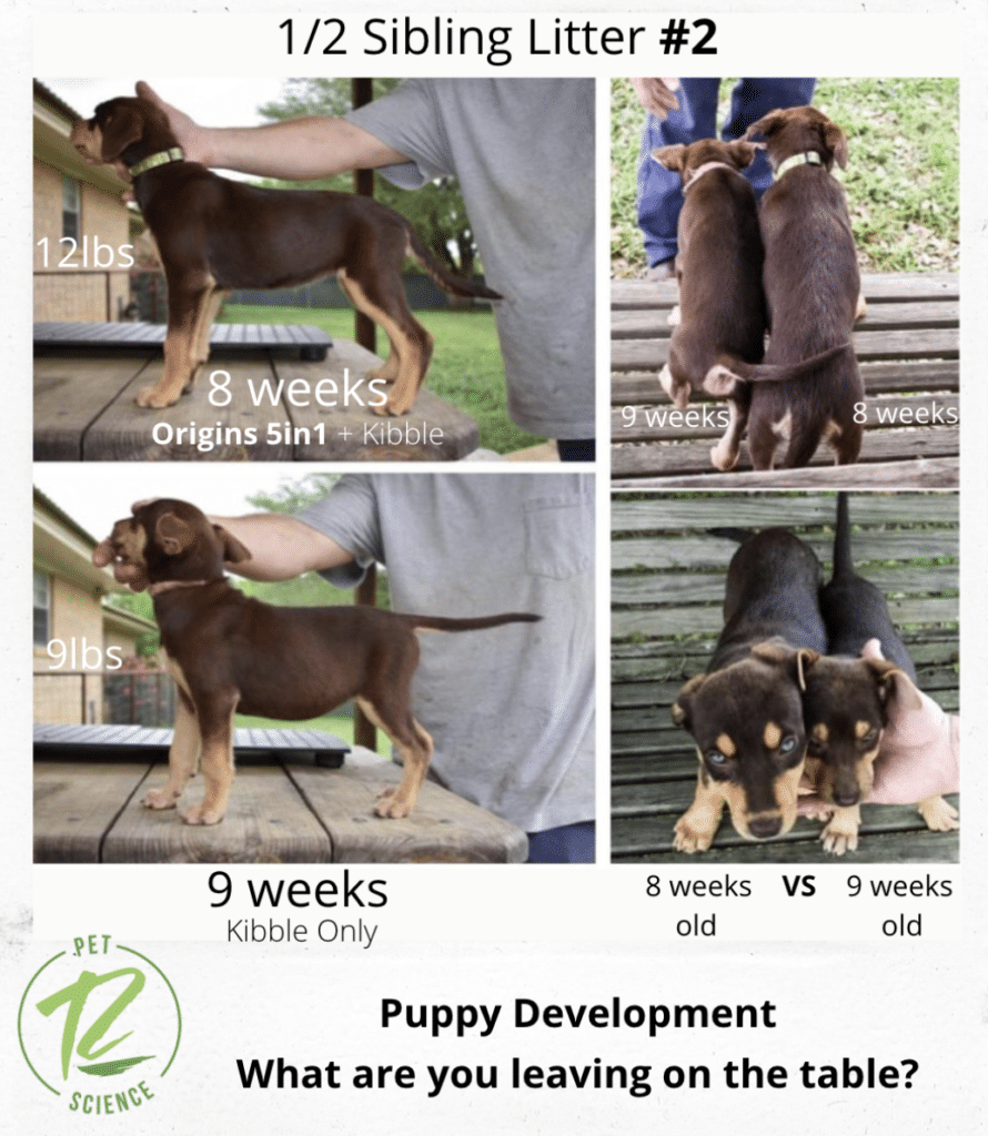 Puppies taking Origins showed better development and that Origins is the best supplement for breeding dogs.