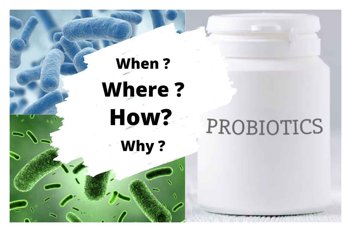 Probiotic bottle for dogs
