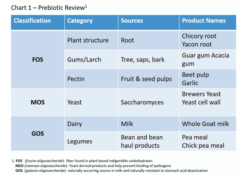 Prebiotic Review of