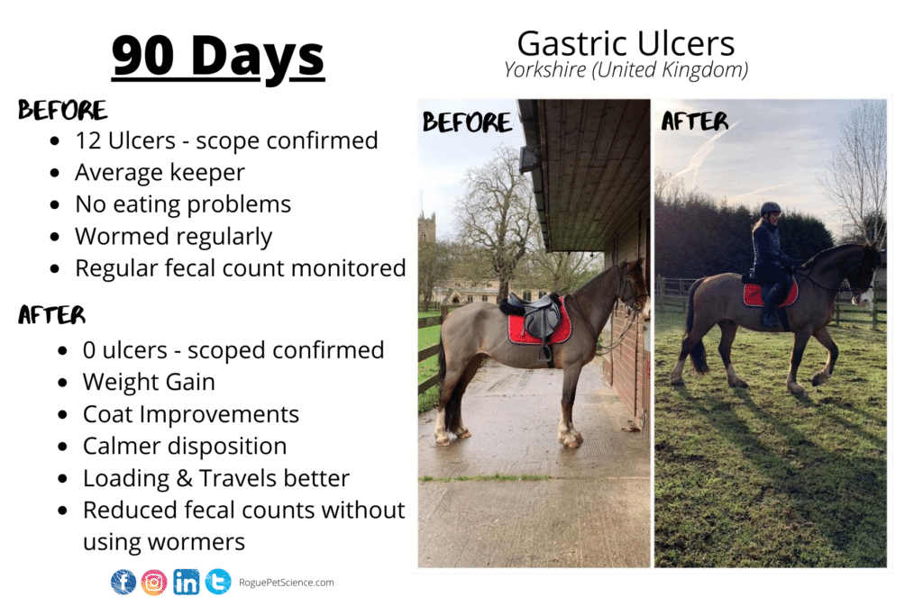 Horse With Gastric Ulcers Improves On Origins Equine 5in1