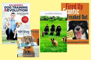 Best dog training books 2021